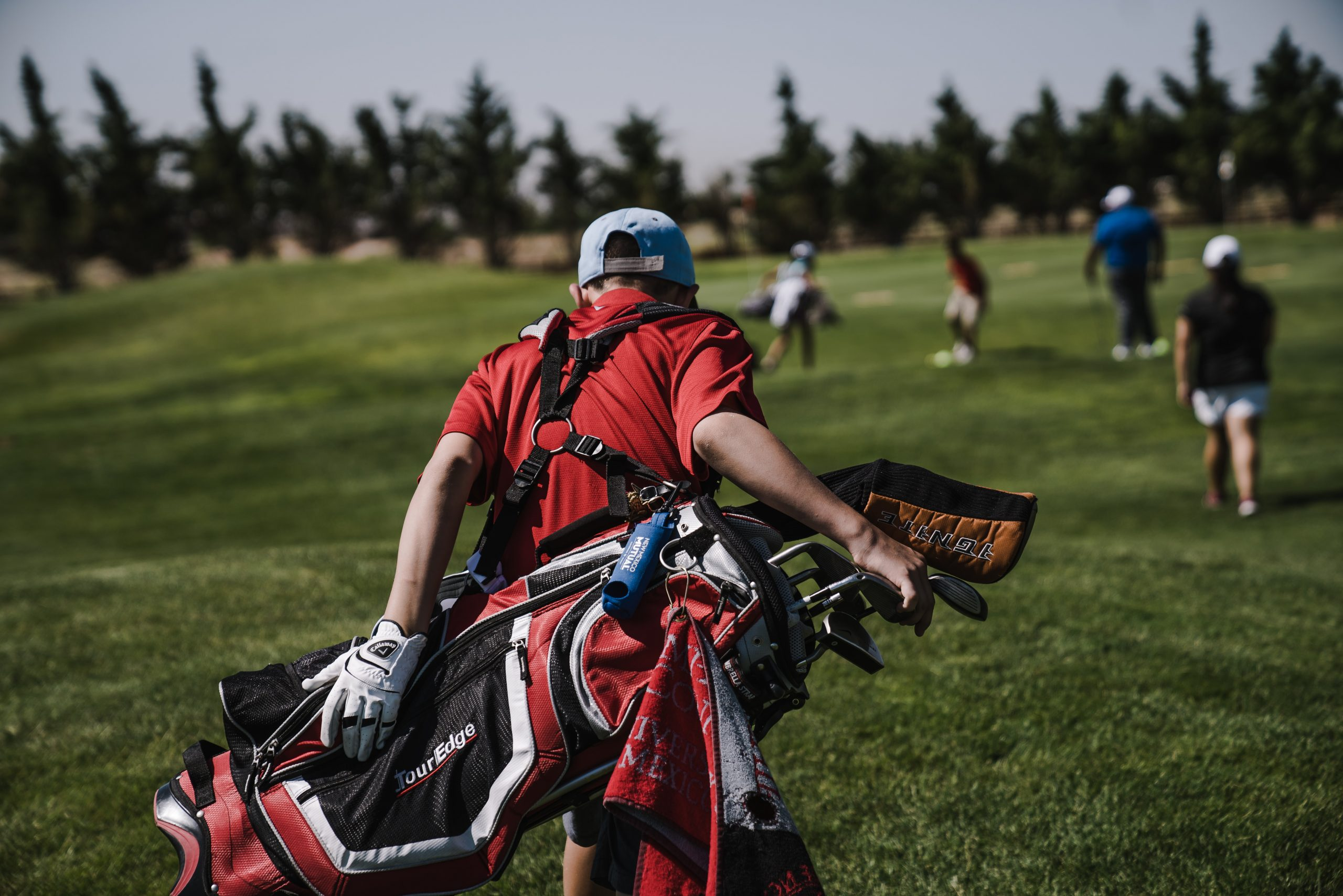featured image for golf bags